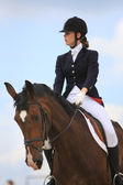 Open Equestrian Cup — Stock Photo