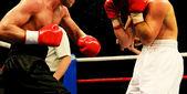 Boxeo — Foto de Stock