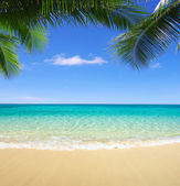 Beach and tropical sea — Foto de Stock