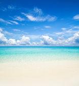 Tropik deniz — Stok fotoğraf