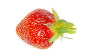 Strawberries — Stok fotoğraf