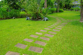 Percorso pietra giardino — Foto Stock