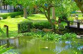 Jardim asiático — Foto Stock