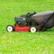 Foto Stock: Mowing the lawn