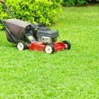 Mowing lawn — Stock Photo #9490896