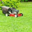 Mowing the lawn — Stockfoto #9490896