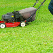 Mowing the lawn — Stock Photo #9490940