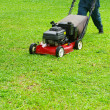 Stockfoto: Mowing the lawn
