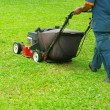 Foto de Stock  : Mowing the lawn