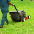 Mowing the lawn — Stock Photo #9491008