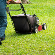 Mowing the lawn — Stock Photo #9773639
