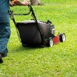 Mowing the lawn — Stockfoto #9773639