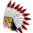 Native indian — Image vectorielle