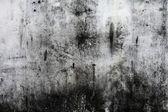 Plano de fundo da parede de pedra alta detalhadas fragmento — Foto Stock