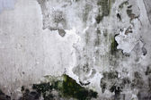 Grunge cracked concrete wall — Foto Stock