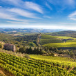 Tuscany landscape — Stock Photo #10536889