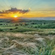 Sunset is in steppe — Stock Photo