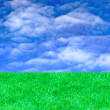Landscape with green grass and sky — Stock Photo