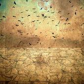 Birds in the sky — Stock Photo
