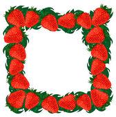 Frame strawberries. — Vetor de Stock