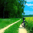 Bicycle in summer rural scene - Stock Photo