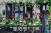 Balcony Garden — Stock Photo