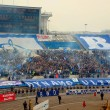 FC Dynamo Soccer Fans During the Game - Stock Photo