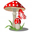 Mushrooms set 004 - Stock Vector