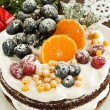 Winter cake - Stock Photo