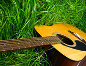 Acoustic guitar in green grass — Stock Photo