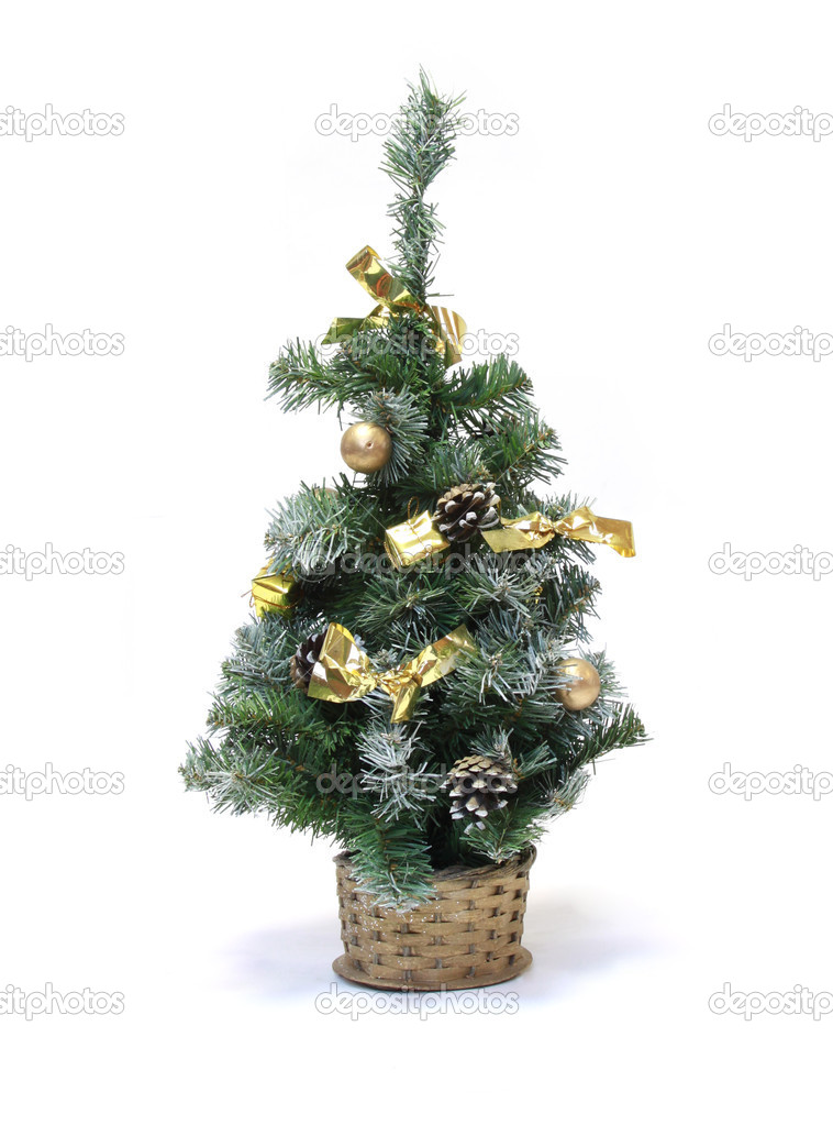 Green fur-tree on a white background — Stock Photo #9265931