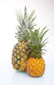 Fresh Juicy Pineapple isolated — Stock Photo