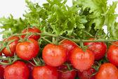 čerstvá cherry rajčaty a zeleným salátem — Stock fotografie