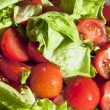 Salad with cheery tomatoes and green leaves — Stock Photo #9867069