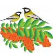 Tits on a branch with sea buckthorn — Stock Vector