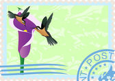 Postage stamps with hummingbirds — Vecteur