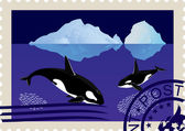Postage stamp with killer whales — Vector de stock