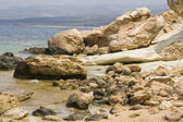 Rocky coast on Cyprus — Stock Photo