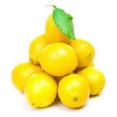 Lemons family — 图库照片