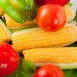 Ripe vegetables - Stockfoto