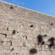 Wailing wall — Stock Photo #7983906
