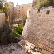 Stock Photo: Moat tower of David