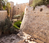 Moat tower of David — Stock Photo