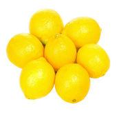 Lemons family — Stock Photo