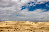 Desert with a blue sky — Stock Photo
