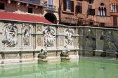 Fonte Gaia, Siena — Stock Photo