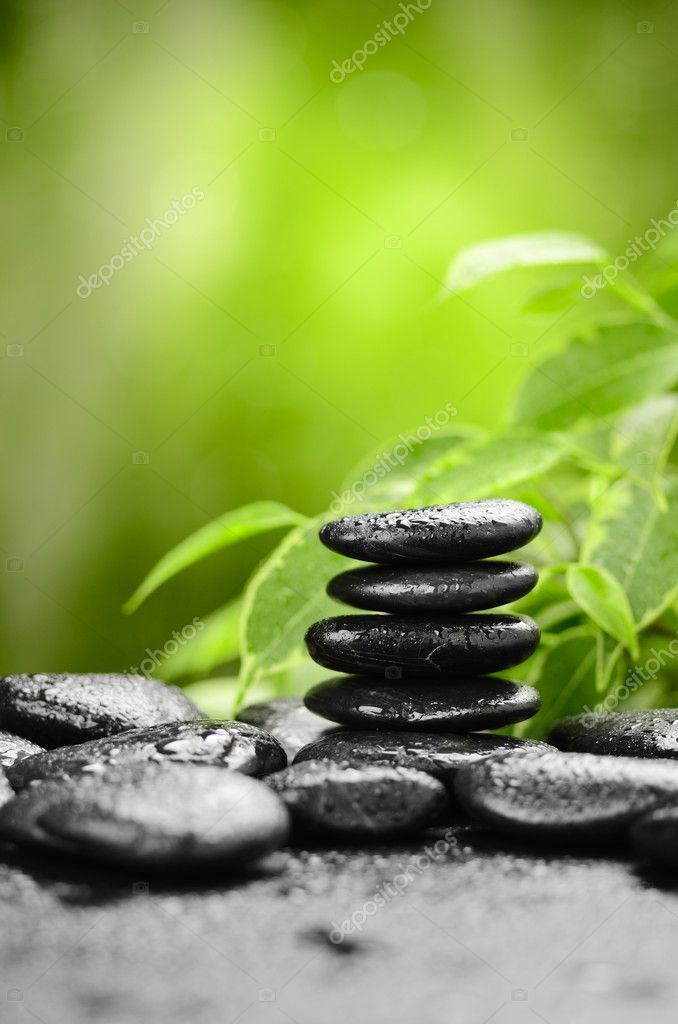 Zen basalt stones and bamboo on the wood  Stock Photo #9689481