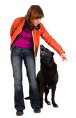 Woman is dog training — Stock Photo