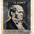 Charles Robert Darwin — Stock Photo #10379096