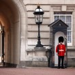 Grenadier Guards Buckingham Palace — Stock Photo